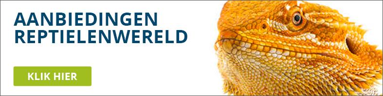 Reptielenwereld aanbiedingn
